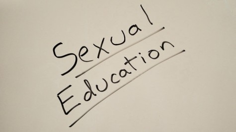 Student-made sexual education website in development