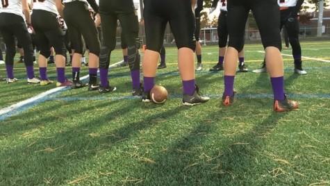 Purple socks for domestic violence awareness
