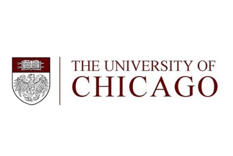 Students respond to the University of Chicago's essay questions