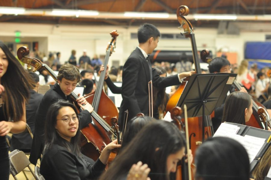 WHS hosts String Jam (31 photos)