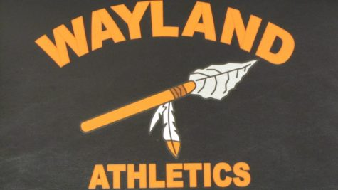 Wayland High School to change logo