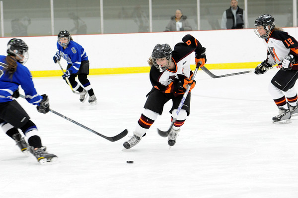 Sophomore Gianna Fargnoli has been playing ice hockey for almost 12 years. Fargnoli also earned a spot on the Wayland-Weston varsity girls hockey team as an eighth grader.