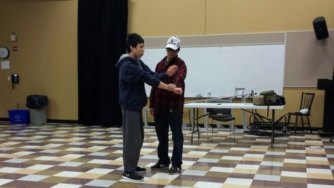 """Above sophomore Jason Mai teaches a fellow student mixed martial arts (MMA). Mai taught students self-defense with MMA techniques. """"I really enjoyed teaching it, and hopefully I'll be doing it next year too."""""""