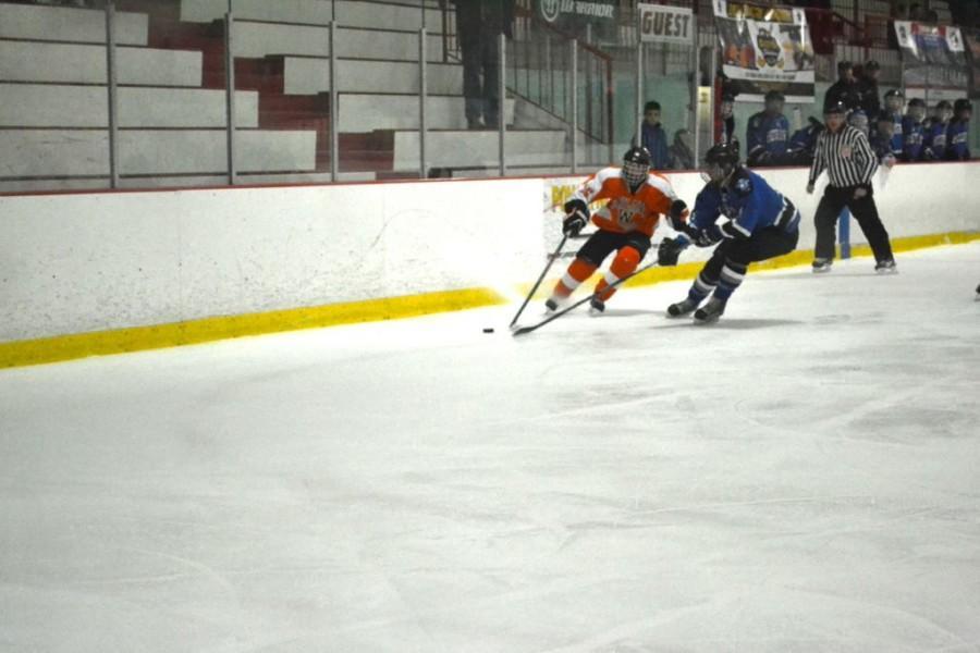 Boys hockey continues to tournament (42 photos)