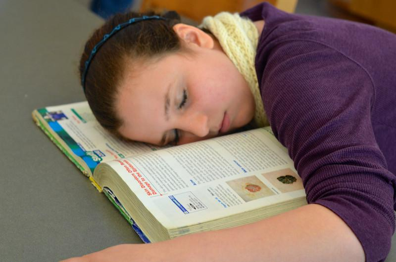 """Student sleep deprivation is a national problem that can have a variety of negative effects. """"I've actually had over the years several students tell me they've fallen asleep at the wheel driving to school, psychology teacher Erin Lehmann said. One time, I knew a student who fell asleep and went off the road. She was okay, but there was minor damage to her car."""