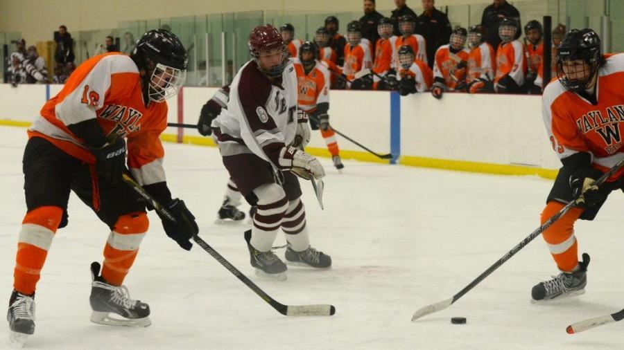 Boys' hockey defeats Weston (56 photos)