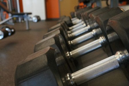 Pictured above are weights from the weight room. The wellness department at WHS has decided to stop implementing