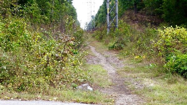 """Above shows the existing rail trail in Wayland. Larry Kiernan is working to create a 3-mile long paved bike path on the old Wayland Rail Trail path. """"I thought, if this was a path, I wouldn't have to drive my kids out here; we could bike!"""" Kiernan said."""