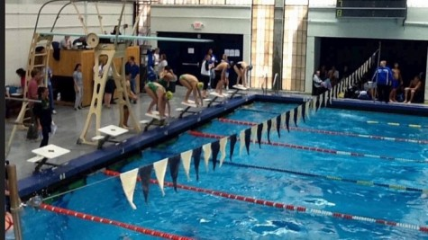 Above is senior Lori Cliff (far left swimmer) competing in a swim meet. Cliff is a key swimmer for the Wayland High School Swim and Dive team.