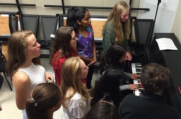 Above is a picture of a combined a cappella rehearsal in a practice room at WHS. From left to right, top to bottom, Anitta Thomas, Ella Johnson, Jen Curran, Lilly Lin, Clara Hurney,  Jessica DeMasi, Maya Anand, Emma DiIanni and Alexa Calder. The a cappella auditions for the 2016-2017 school year have been moved to the fall.