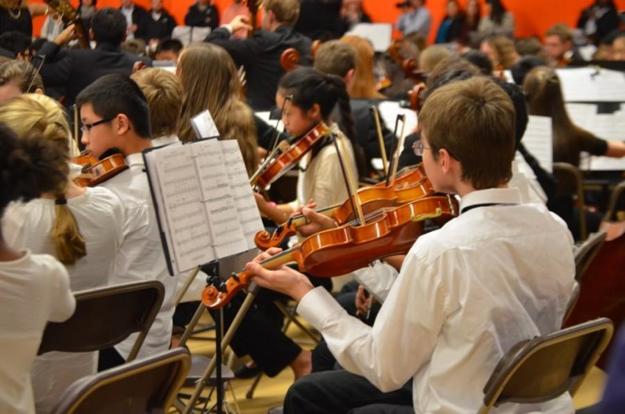 String Jamboree (33 photos)