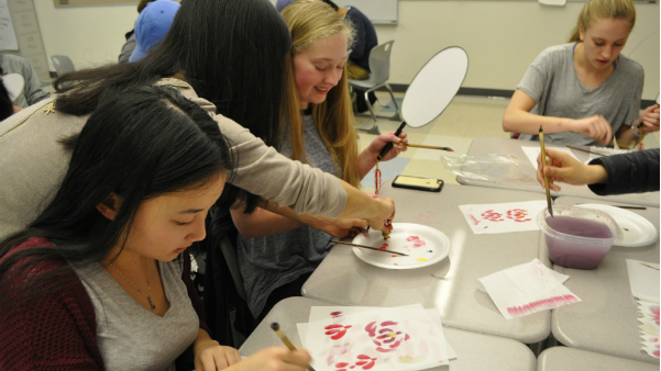 Mandarin classes create fans (25 photos)