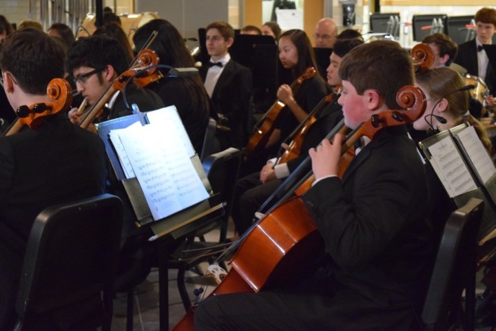 Orchestra and chorus perform in pops concert (18 photos)