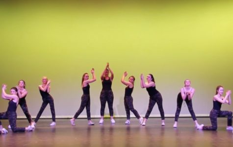 Window Dance Ensemble performs in annual show (video)