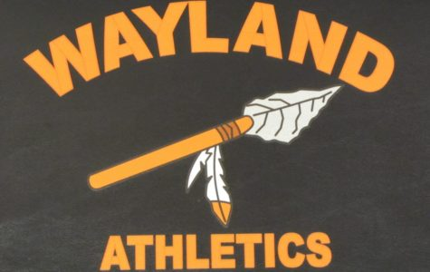 Wayland High School to remove Native American imagery from logo