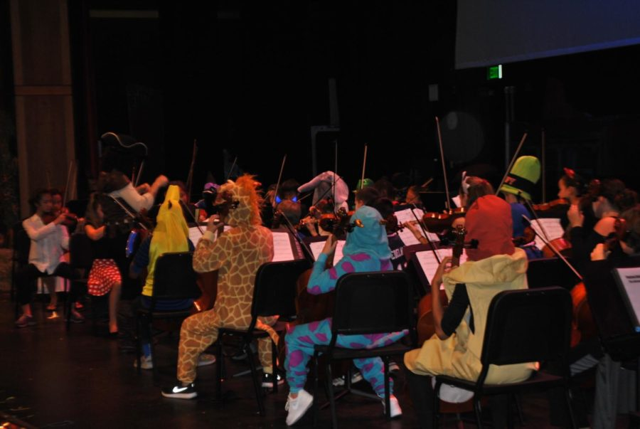 Members of the orchestra are dressed in costumes for the masquerade concert.