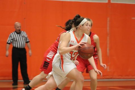 Girls' basketball defeats Waltham (36 photos)