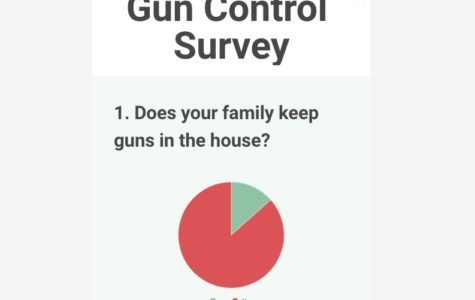 Infographic: Students' opinions on gun control