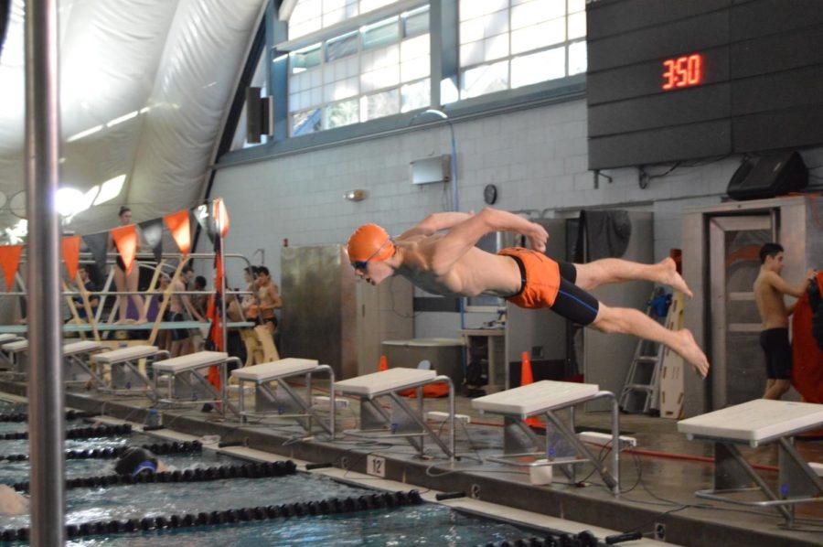 Senior Asa Greenaway dives into the pool.