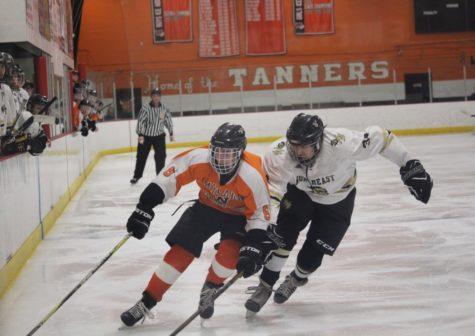 Boys' hockey defeatsNortheast Tech in playoffs (36 photos)