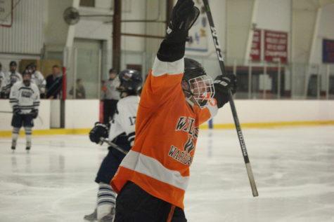 Boys' hockey defeats St. Joseph Prep in the North Semi-Finals (35 photos)