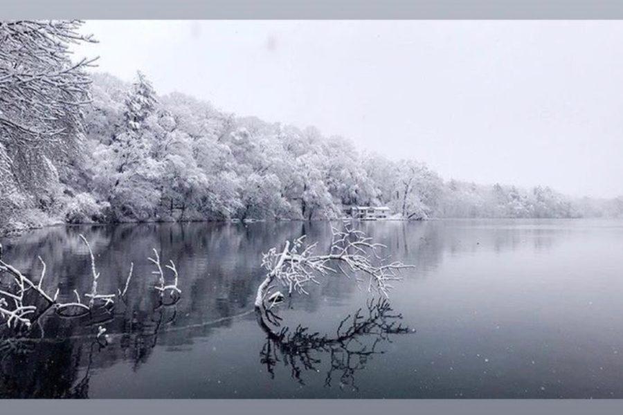 UPDATED: Winter storm Skylar photo contest (33 photos)