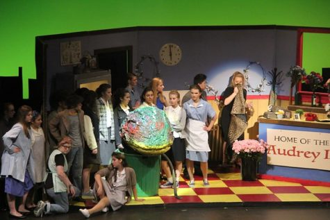 WHSTE opens the curtain to two spring plays