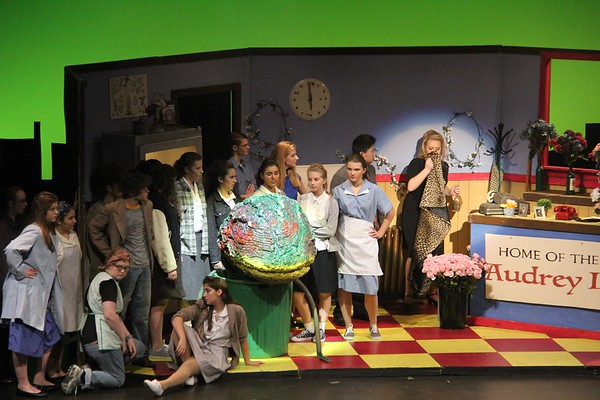 Pictured above is the cast of the fall musical, Little Shop of Horrors, directed by Aidan O'Hara.
