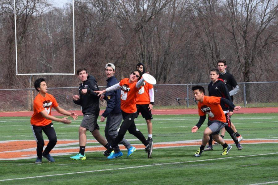 Senior Vincent Pak reaches for the disc.