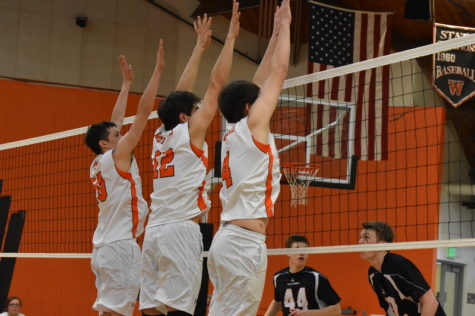 Volleyball team looks to fill the gaps