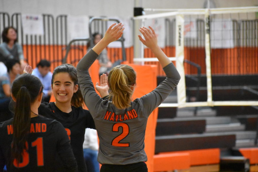 Senior Noelle McGah high-fives senior Ines Alpendre in celebration during the girls' varsity volleyball game against Newton South.