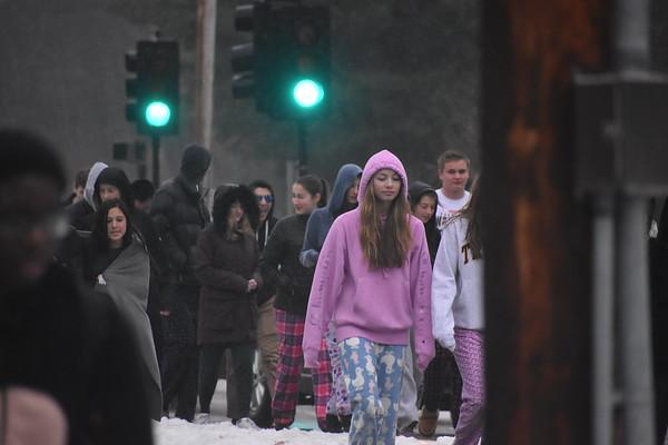 Junior+Savannah+Sugar+walks+through+snow.