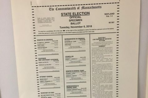 Seniors vote for the first time in midterm elections