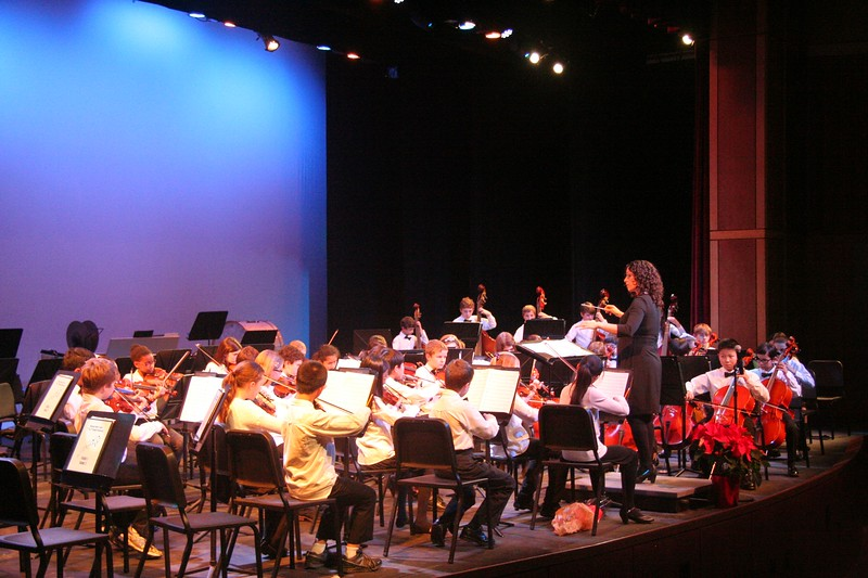 The+student+orchestra+plays+onstage+in+the+WHS+auditorium.+%E2%80%9CIt%E2%80%99s+a+good+opportunity+for+people+to+see+what+we+do%2C%E2%80%9D+Fine+Arts+Department+Susan+Memoli+said.