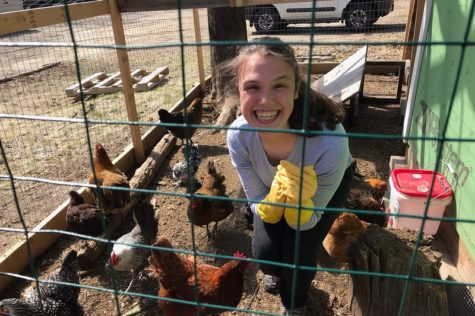 "Lara Bencsics: ""I wanted to help animals and see how a real life farm works"""