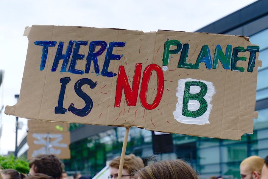 Students strike in support of global climate change movement