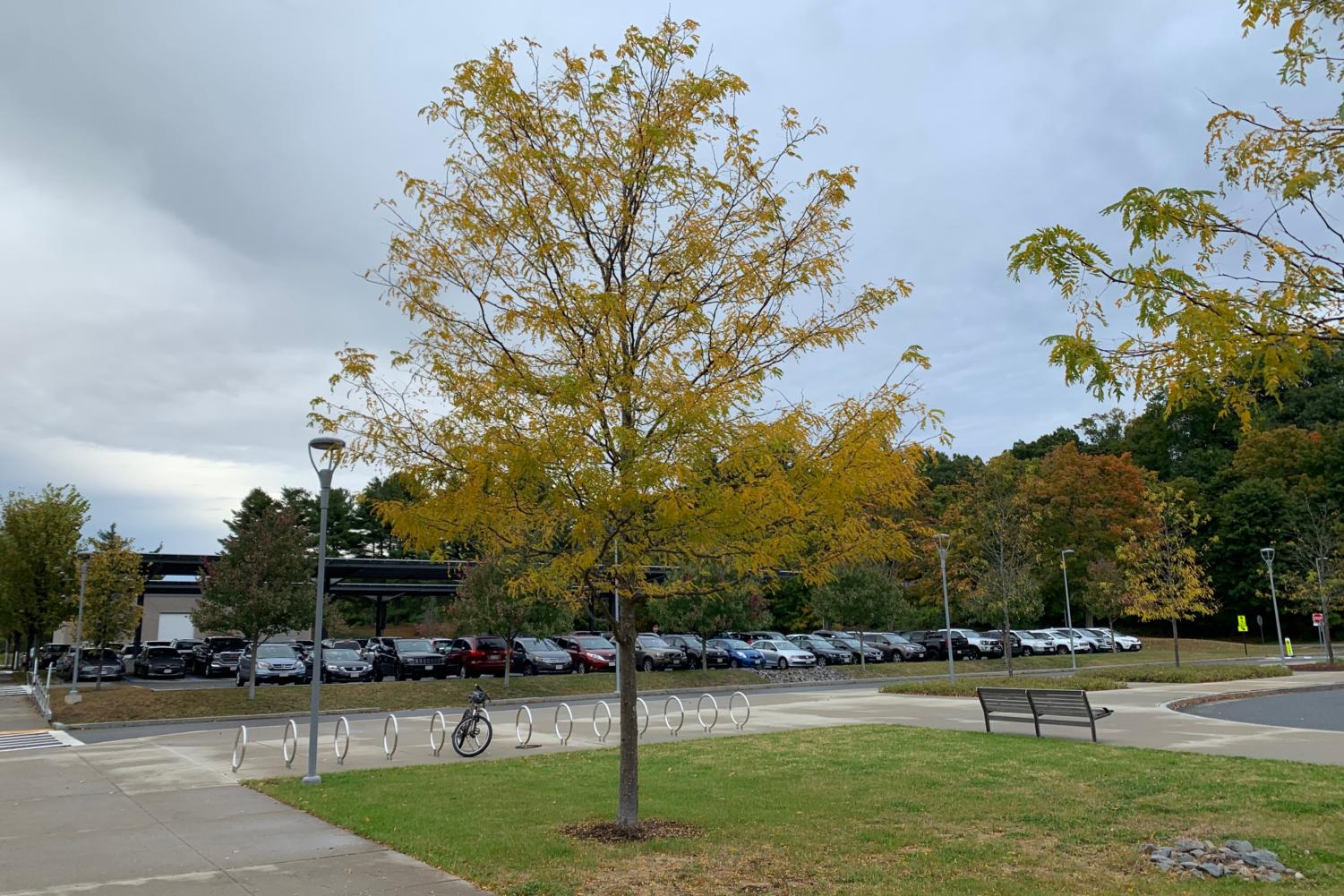 As the colors of the leaves start to change, WSPN has created a fun challenge for WHS students.