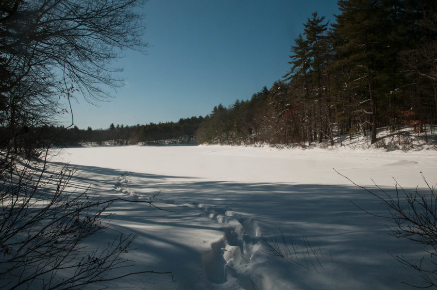 Walden Pond is a great place for ice skating during the wintertime. The natural beauty of Walden makes it a breathtaking and magical experience. Grab a pair of skates and go with a friend!