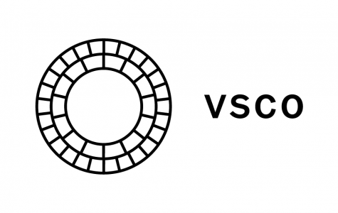 What is VSCO in the WHS community?