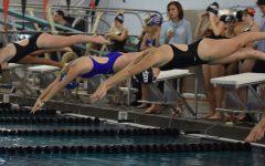 Wayland crushes Newton South at swim meet (7 photos)