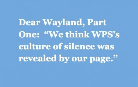 """Part One:  """"We think WPS's culture of silence was revealed by our page."""""""