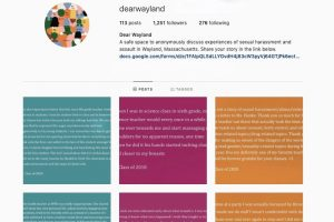 DearWayland: The Instagram account that shocked the community