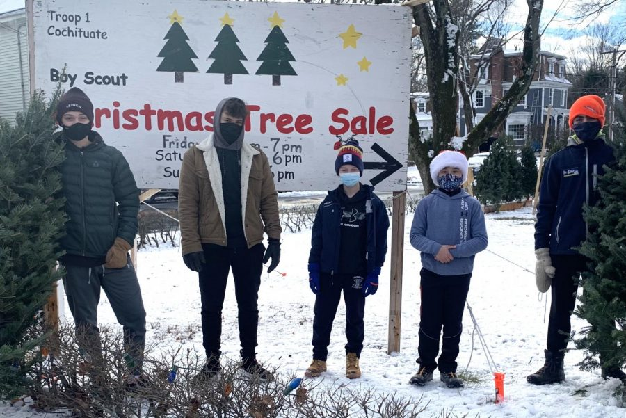 """Freshman Graham Schwendt, eighth grader John Chausse, sixth graders Edge Wheeler and Owen Kawahata and freshman Ben Dugan line up to promote their Troops annual Christmas tree sale. Each year, the scouts sell several hundred Christmas trees to local Wayland residents, even making accommodations this year due to COVID-19. """"I like talking to people, helping them get what they want, and it's nice to know that you're giving somebody a Christmas tree,"""" WHS senior and Eagle Scout Zach Marto said."""