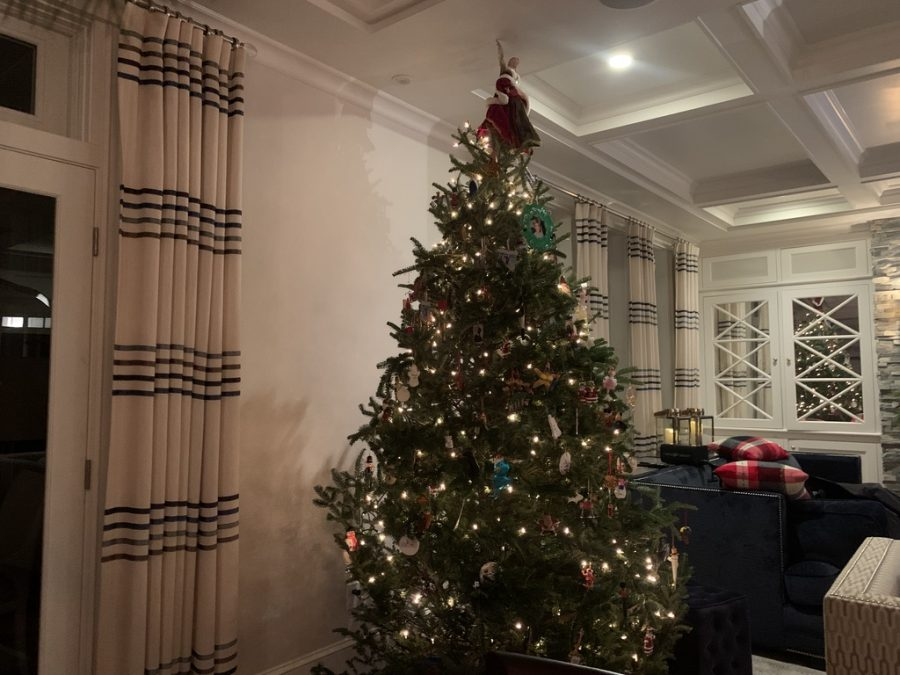 Junior Emily Staiti and her family decorate their tree every year in mid December. They always put it in the same place and decorate it as a family