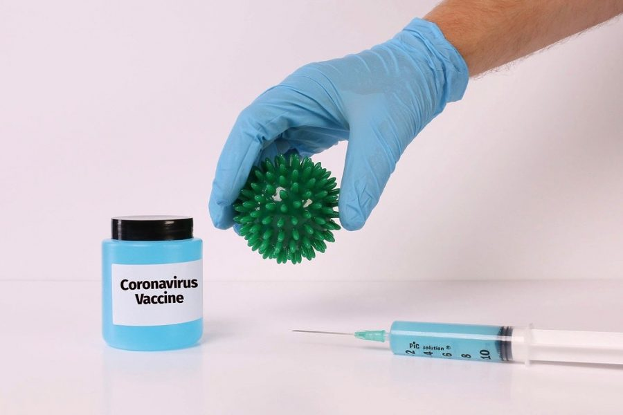 Two COVID-19 vaccines were approved by the FDA last December: the Pfizer vaccine on Dec. 11 and the Moderna vaccine on Dec. 18. The vaccine has been distributed to healthcare workers and residents of long term care facilities in Wayland.