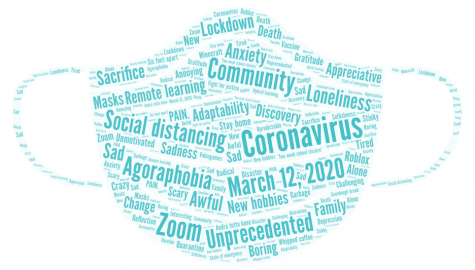 In a survey sent out to Wayland High School students, students thought of one word or phrase that describes or commemorates the past year. Among the most common words were unprecedented, Zoom and social distancing.
