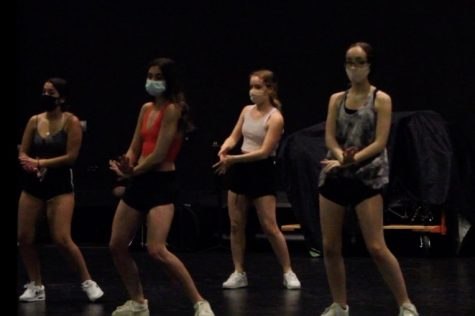 Window Dance Ensemble jumps into their spring show (video)